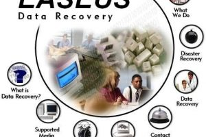 Easeus Data Recovery Wizard 9 License Code plusCrack Download